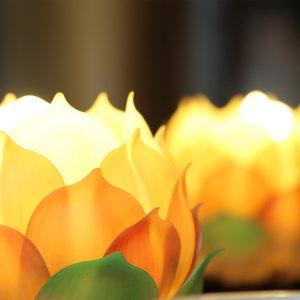 Ayurveda Gratis live erleben und tolle Vorteile erfahren
